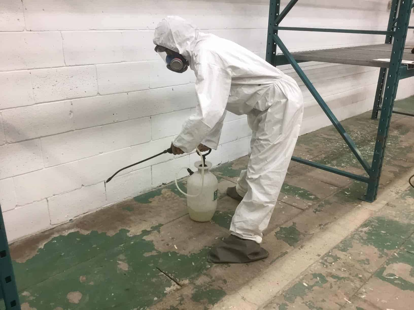 mould removal specialist spraying a building in Toronto