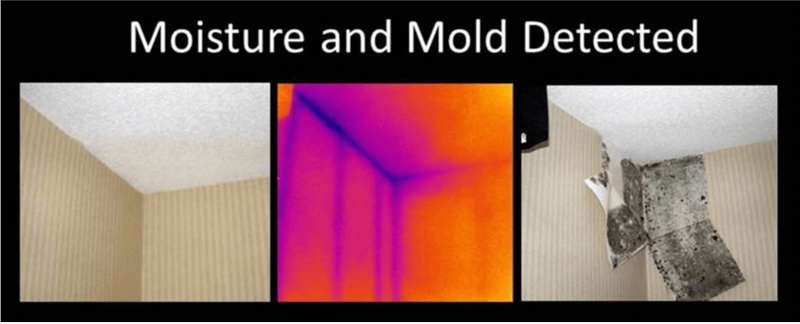 Infrared Thermal Imaging detection